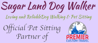 Sugar Land Dog Walker